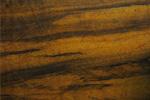 עץ אמבויה